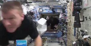 ¿Un gorila en el espacio?