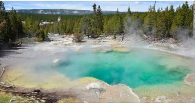 Hombre muere desintegrado en ácido tras de caer en géiser de Yellowstone