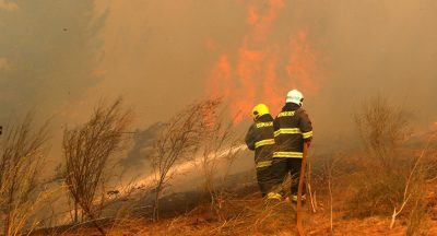 Chile enfrenta los peores incendios de su historia.