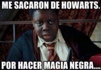 Colecciona los mejores memes de Harry Potter