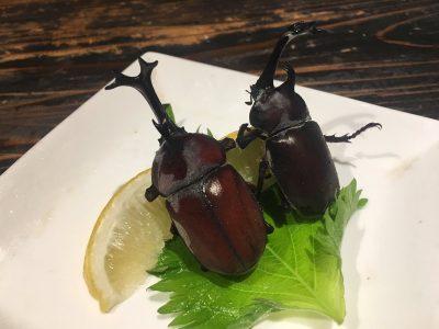 Restaurante japonés cocina animales extraños