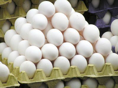Una empresa de huevo regalará maletas si utilizas sus cajas de cartón