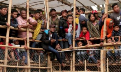 Conoce la inhumana tradición de Indonesia (FOTOS)