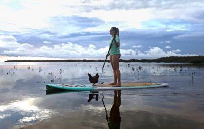 Una mujer y su gallina hacen paddleboarding y se vuelven virales (Video)