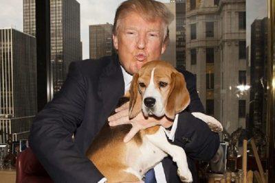 Los Trump son la primera familia presidencial sin mascota