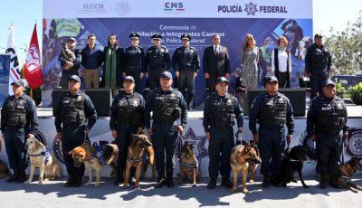 Policía Federal jubila a 14 oficiales caninos que cumplieron su ciclo