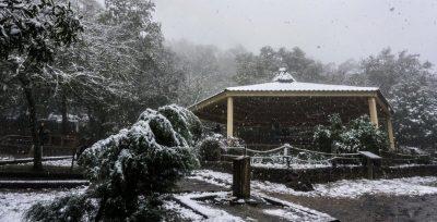 México destaca en Facebook por impactantes videos de la nieve