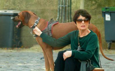 Mujer arriesga la vida por salvar a un perro