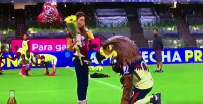 Mascota del América pide matrimonio en el Estadio Azteca (VIDEO)