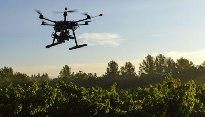 Drones plantan 100 mil árboles al día para acabar con la deforestación