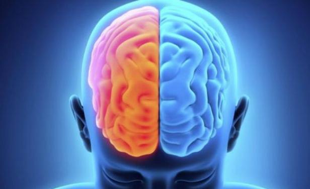 Empresa vende la 'inmortalidad' haciendo copias de los cerebros