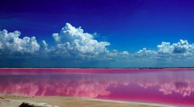 Las Coloradas: las paradisiacas aguas rosas de México
