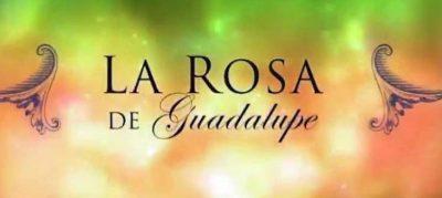 Televisa planea 'refritear' éxitos de La Rosa de Guadalupe en serie original