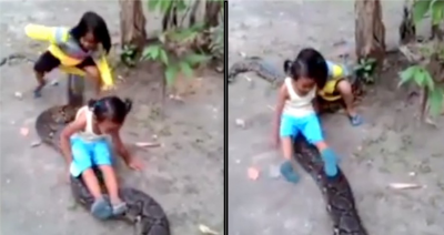 Niñas se montan sobre gigantesca pitón y estremecen las redes (VIDEO)