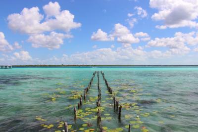 Bacalar: una mágica laguna