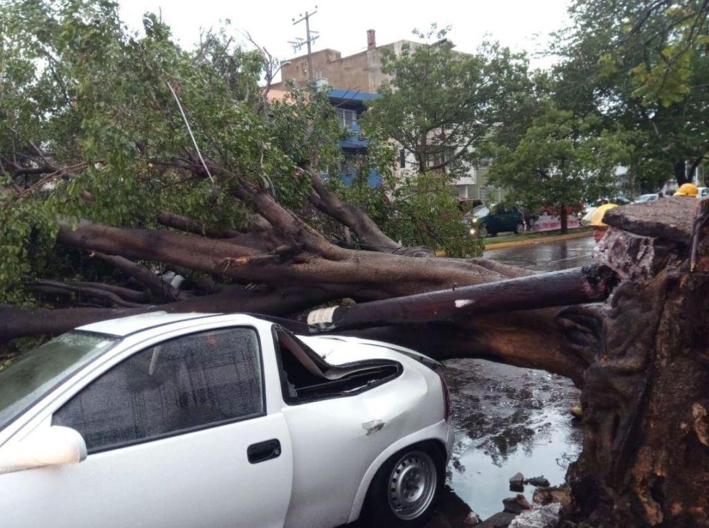 La noche de este miércoles 27 de junio, diversas partes de la ciudad de la Zona Metropolitana de Guadalajara se vieron afectadas por la fuerte tormenta que dejó graves estragos: casas inundadas, árboles caídos sobre autos y fincas, vehículos varados y arrastrados por la corriente, entre otras más.