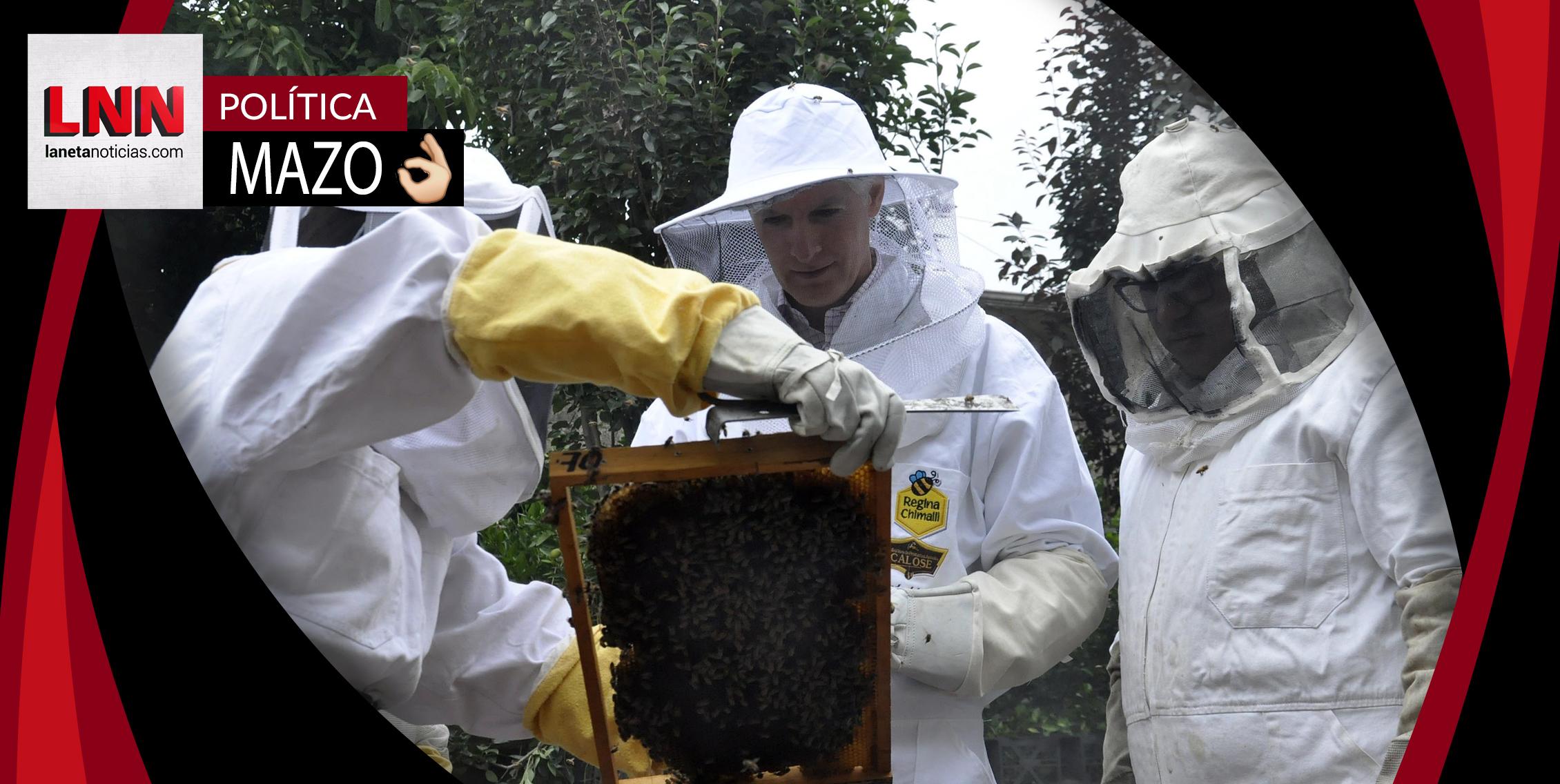 Alfredo del Mazo impulsa producción de tomate y apicultura en Los Volcanes