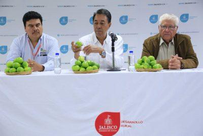 Guadalajara planea primer congreso del limón