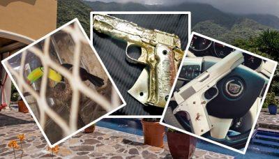 Animales exóticos, joyas y autos: las extravagantes propiedades del CJNG
