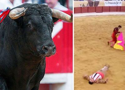 ¡Impresionante! Toro noquea a mozo en plena corrida en plaza de Portugal (VIDEO)