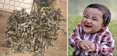 <i>¡Pequeño demonio! </i>Niño destruye 20 mil pesos en trituradora de papel
