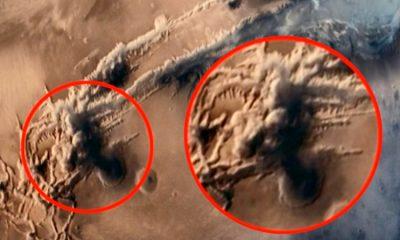 <i>¿Qué nos ocultan?</i> Hallan a 'soldado extraterrestre' en fotos de la NASA (VIDEO)