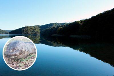 Hallan extraña 'criatura alienígena' en un lago y pobladores <i>mueren de miedo</i> (FOTOS)