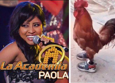 Redes <i>humillan</i> a Paola, la ganadora de La Academia, con lluvia de memes (FOTO)