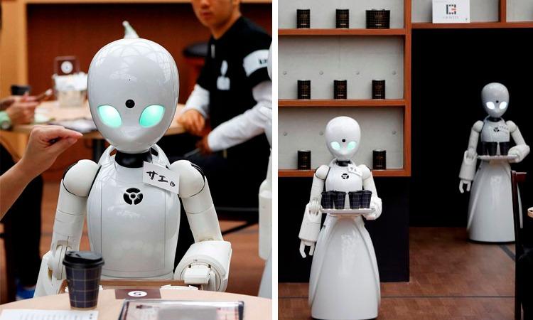 Lanzan robots meseros manejados por personas con discapacidad