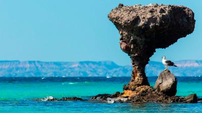 Déjate cautivar por el atractivo natural que Playa Balandra tiene para ti