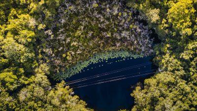Relájate entre los cenotes más bellos de la Riviera Maya en Xenotes, Xcaret