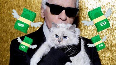 Choupette: la gatita famosa de internet que se hizo millonaria