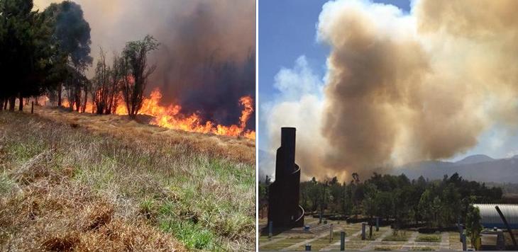Fuerte incendio devora pastizales del Parque Ecológico de Xochimilco