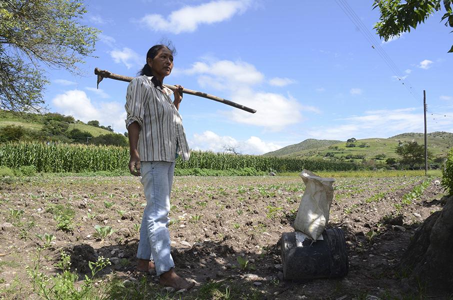 Ricardo Monreal plantea que mujeres tengan mayor acceso a tierras y patrimonios