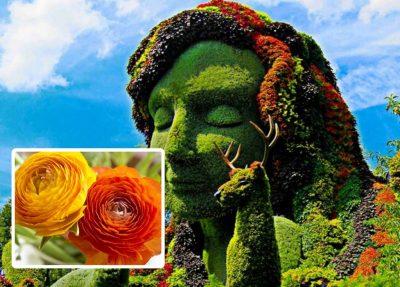 Festival de Flores y Jardines 2019: goza de un festín visual en Polanco