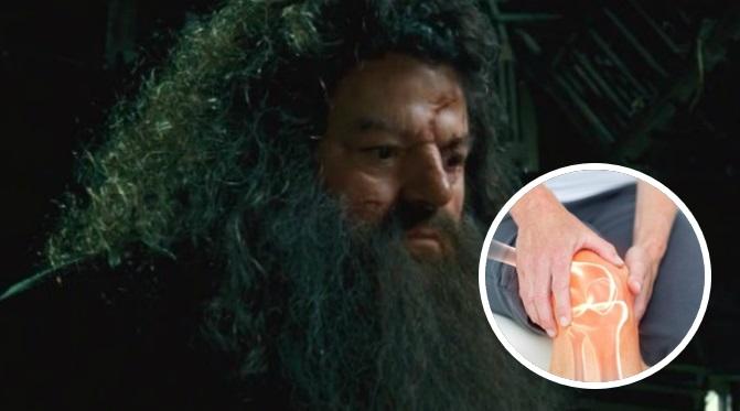 Osteoartritis: la enfermedad que confinó a Hagrid a una silla de ruedas