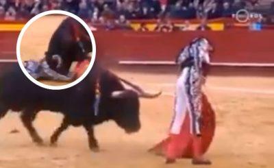 Enrique Ponce sufre terrible cornada; toro le clava cuerno por detroit (VIDEO)