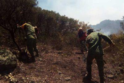 Sedena se suma a labores para sofocar incendio en San Luis Potosí