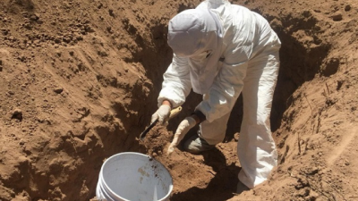 En Sonora, Guerreras Buscadoras encuentra 20 cuerpos en fosas clandestinas