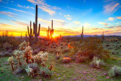 Sonora invita a turistas a conocer los sitios naturales en temporada vacacional