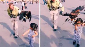 Águila ataca a niña y reacción de la madre causa sorpresa en redes. Noticias en tiempo real