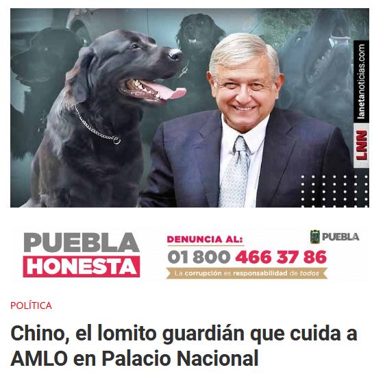Políticos Día Mundial del Perro