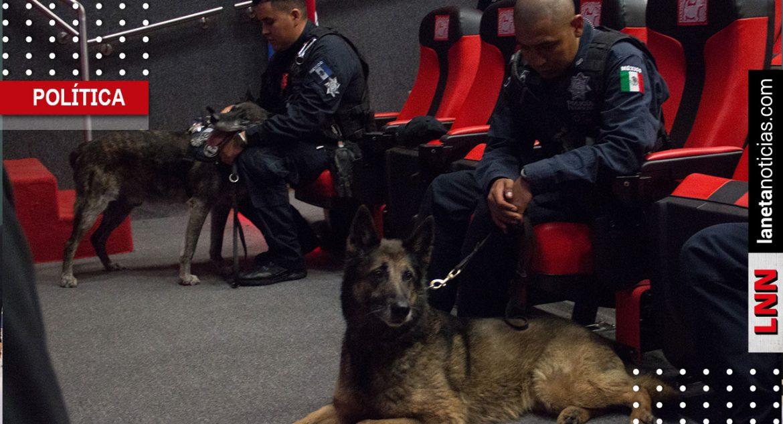 Policía Federal Perritos jubilación
